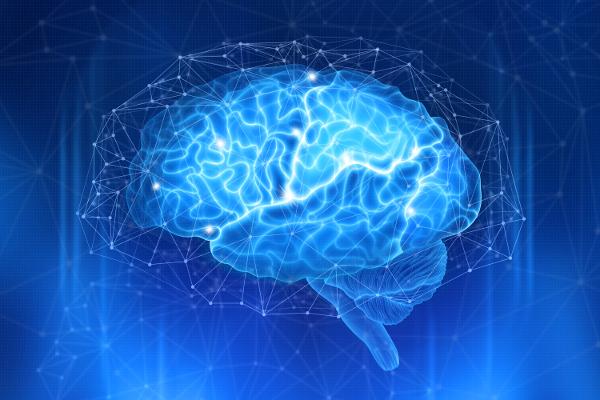 Blue Brain Concept